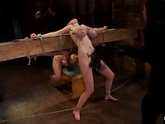 Hogtied - Darling and Katie kox
